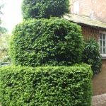 Topiary Castle