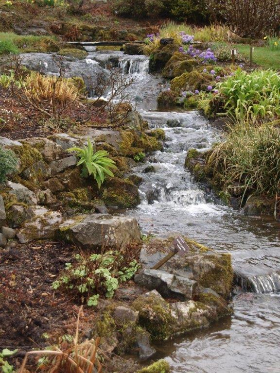 Stream garden at Holehird