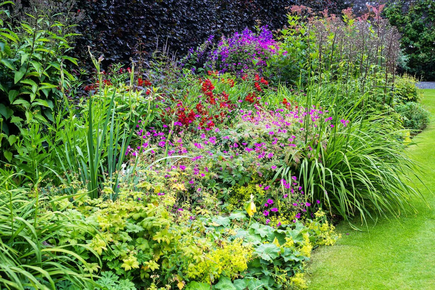 Cambridge - Herbaceous Border Skills Day