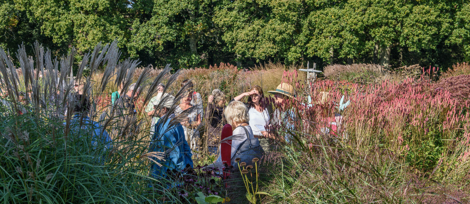 Walk and Talk with the Head Gardener