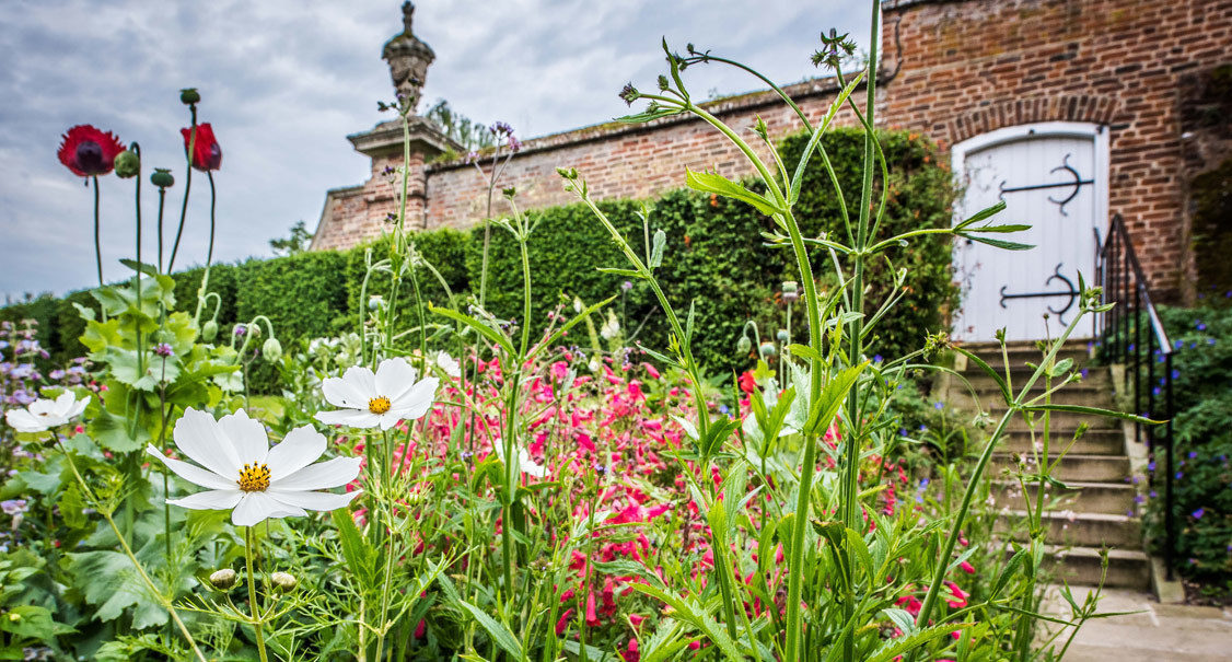 Cambridge - Walk & Talk with the Head Gardener - Madingley Hall