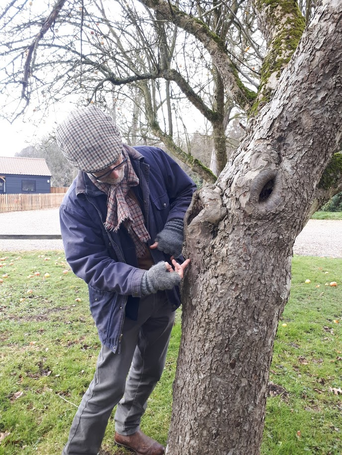 Norfolk - Restorative Pruning Workshop
