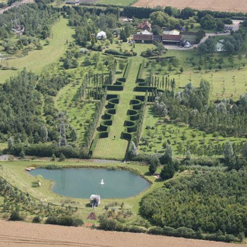 Essex - Pleached hedge Pruning - Skills Day