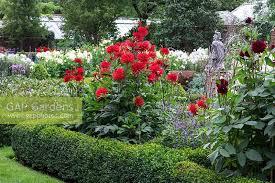 Surrey- Late Summer Colour in a Garden